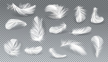 Vector 3d Realistic Set Of White Bird Or Angel Feathers In Various Shapes, Isolated On Transparent Background. Symbol Of Lightness, Literature And Poetry. Decoration Element, Design Object