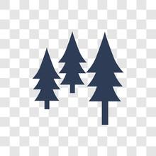 Pines Icon Vector
