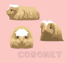 Guinea Pig Coronet Cartoon Vector Illustration