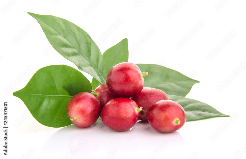 Fototapety, obrazy: fresh coffee beans with leaf on white background