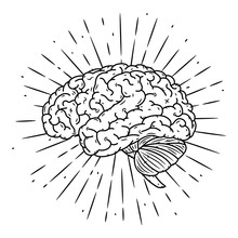 Brain. Hand Drawn Vector Illustration With Brain And Divergent Rays. Used For Poster, Banner, Web, T-shirt Print, Bag Print, Badges, Flyer, Logo Design And More.