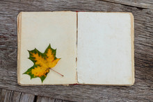 Back To School, Autumn,  Blank, Top View, Page, Paper