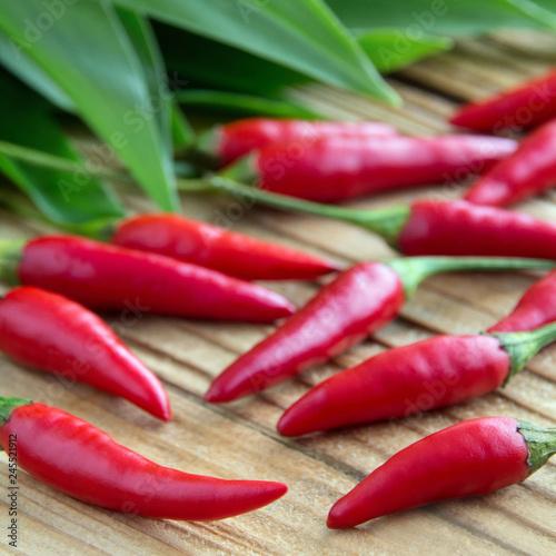 Staande foto Kruiderij Red chili pepper and ramsons leaves