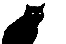 Silhouette Of A Cat With Eyes