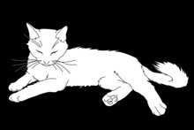 Cute Realistic Cat Laying. Vector Illustration Of White Kitty Isolated On Black Background. Element For Your Design, Print, Sticker. White Cat In Simple Sketch Style. Lineart And Silhouette