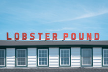 Lobster Pound, In Lincolnville, Maine
