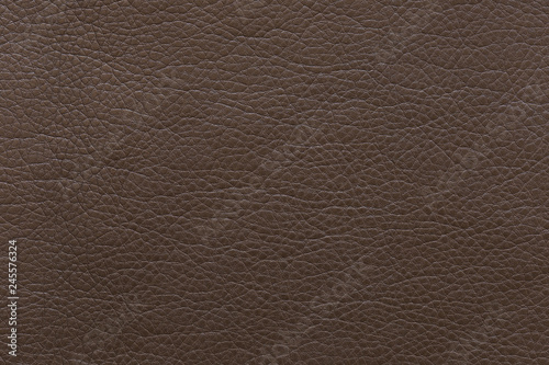 Garden Poster Leder Brown pearlescent artificial leather. Texture for background and design.
