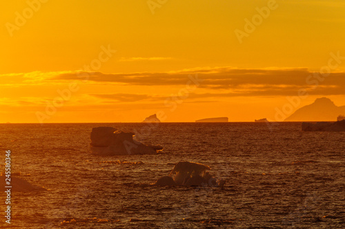 Staande foto Rood paars Sunset over the Weddell Sea