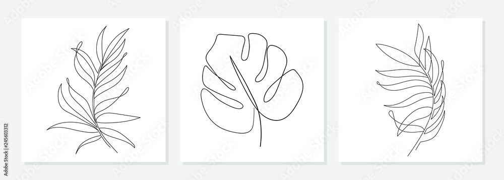 Fototapety, obrazy: One line drawing vector monstera leaf and palm tree leaves. Modern single line art, aesthetic contour. Perfect for home decor such as posters, wall art, tote bag or t-shirt print, sticker, mobile case