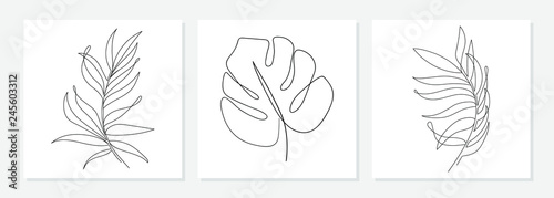 Fototapeta One line drawing vector monstera leaf and palm tree leaves. Modern single line art, aesthetic contour. Perfect for home decor such as posters, wall art, tote bag or t-shirt print, sticker, mobile case obraz
