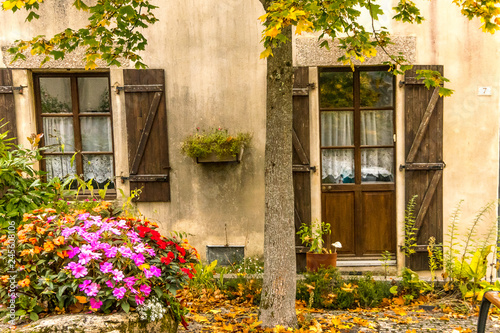 Fototapety, obrazy: Window and wooden door with plant in Rochefort-en-Terre, Brittany