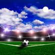 Soccer stadium and beautiful green grass
