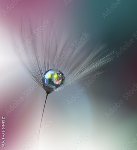 Beautiful Spring Nature Background,dandelion flower.Abstract Macro Photography.Artistic closeup concept.Web Banner for design and website.Amazing Colorful Wallpaper.Green Colors.Floral Art.