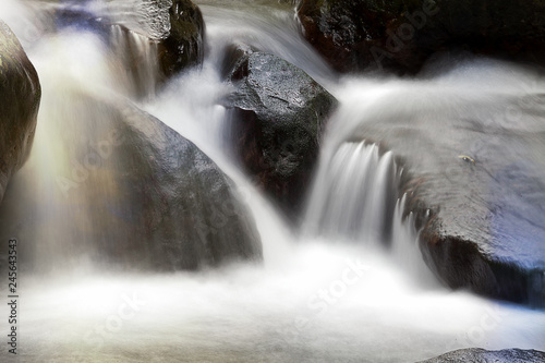 Photo Stands Forest river river nature landscape with stream in rainforest nature