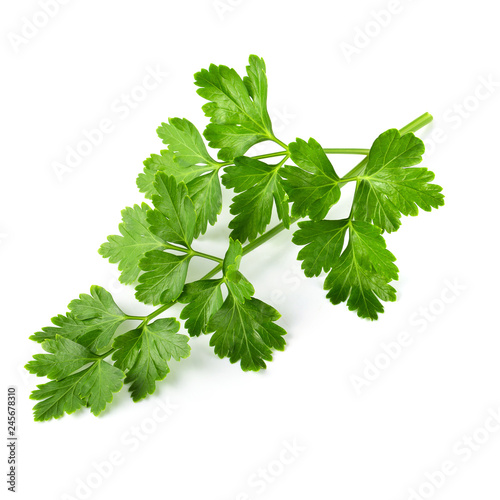 Fotografía  Bunch leaves parsley isolated over white background