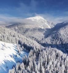 Widok z lotu ptaka przy zim górami. Las z powietrza. Zimowy krajobraz z drona. Śnieżny krajobraz. Fotografia lotnicza