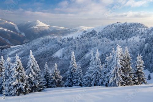 zimowy-krajobraz-na-slowacji-gory-wielka-fatra-pod-sniegiem-zamarznieci-sniezni-drzewa-i-ciemnego-nieba-panorama