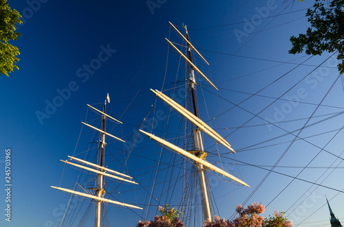 Valokuva  Mast with shroud rope of ship yacht with green leaves trees around