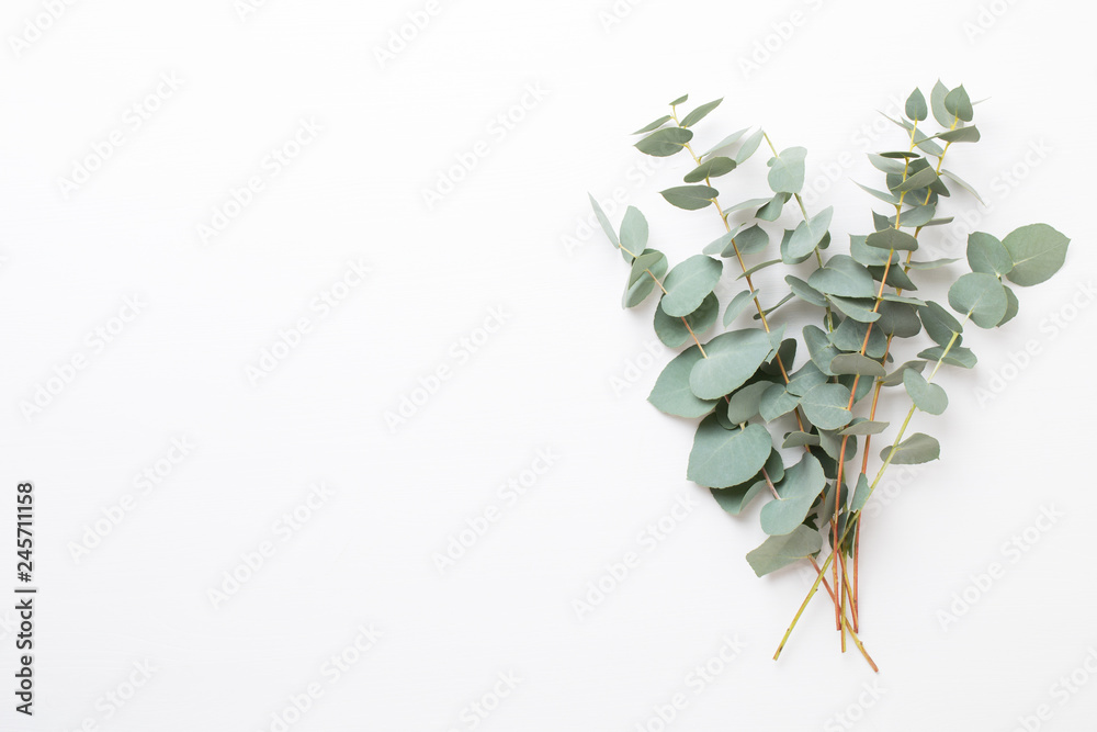Fototapety, obrazy: Flowers and eucaaliptus composition. Pattern made of various colorful flowers on white background. Flat lay stiil life.
