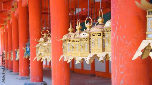 Foto auf AluDibond Koralle 神社の燈籠②