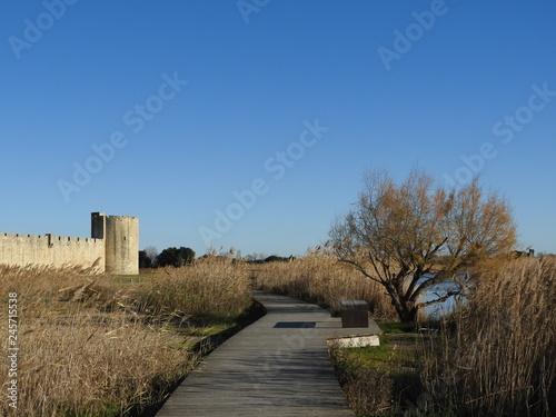Cuadros en Lienzo Rempart d'Aigues-Mortes