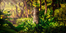 Old Totem In Tropical Jungle, In The Forest, Stone Pillar, Idol In Bush