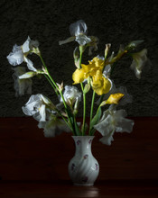 Bouquet Of White And Yellow Ir...