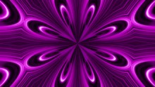 Abstract Animation Of Purple And Black Flower Kaleidoscope. Abstract Multicolored Motion Graphics Background.
