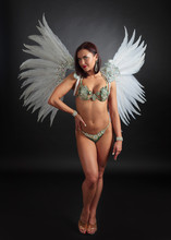 Attractive Woman In Carnival C...