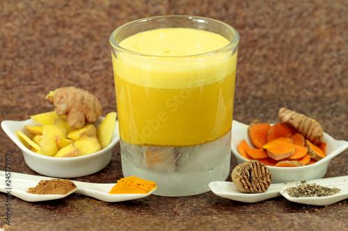 ayurvedic drink, golden milk  with soy milk Canvas Print