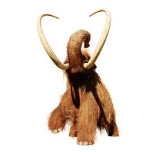 Woolly Mammoth, Running Prehis...