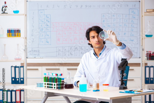 Fotografia  Young chemist working in the lab