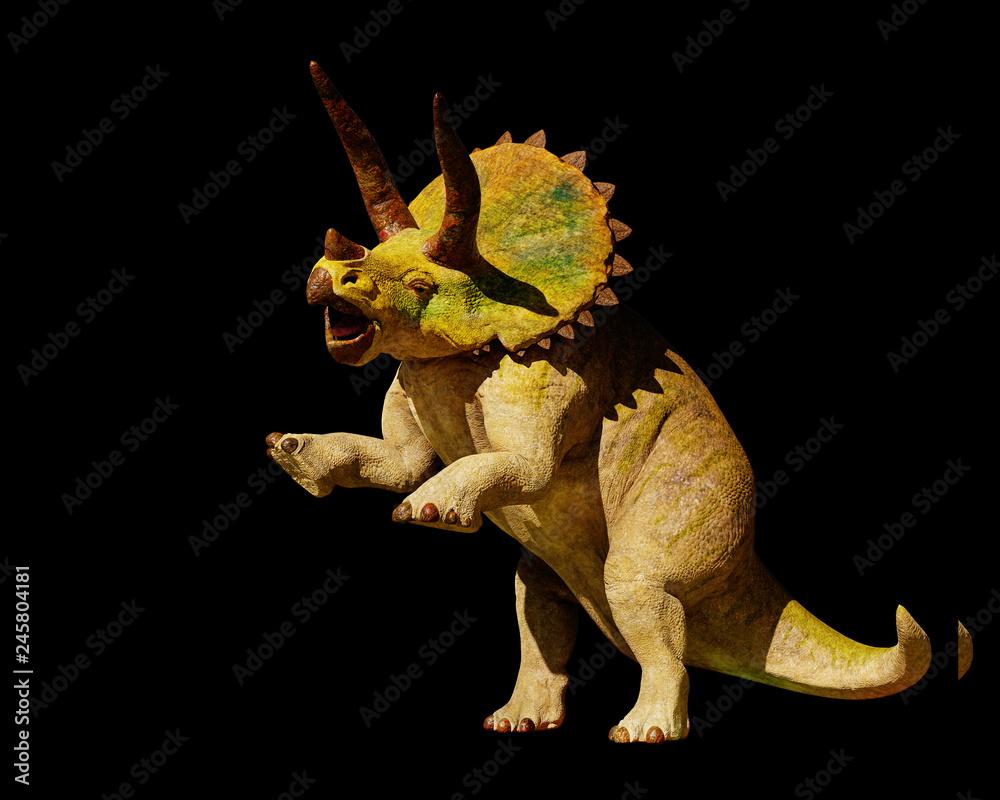 Fotografie, Obraz  Triceratops horridus dinosaur in action (3d rendering isolated on black backgrou