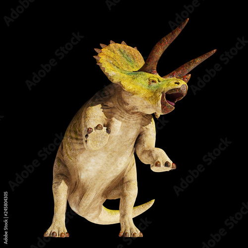 Fotomural Triceratops horridus dinosaur in action (3d illustration isolated on black backg