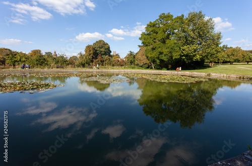 Fotografiet Glastonbury Abbey Pond