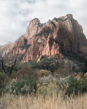 Beautiful Red Rocks At Zion Na...
