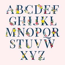 Alphabet Floral Background Ill...