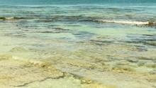 Gorgeous Tropical Ocean Reef D...