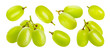canvas print picture - Green grape isolated on white background