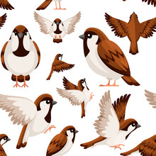 Seamless Pattern. Colorful Icon Set Of Sparrow Bird. Flat Cartoon Character Design. Bird Icon In Different Side Of View. Cute Sparrow For World Sparrow Day. Vector Illustration On White Background