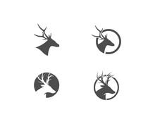 Deer Ilustration Logo Vector