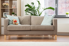 Comfort, Furniture And Interio...