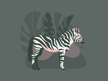 Hand Drawn Vector Abstract Cartoon Modern Graphic African Safari Nature Concept Collage Illustrations Art Print With Zebra Animal In Wild And Tropical Palm Leaves Isolated On Dark Color Background