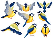 Colorful Icon Set Of Titmouse Bird . Flat Cartoon Character Design. Bird Icon In Different Side Of View. Cute Titmouse Template. Vector Illustration Isolated On White Background