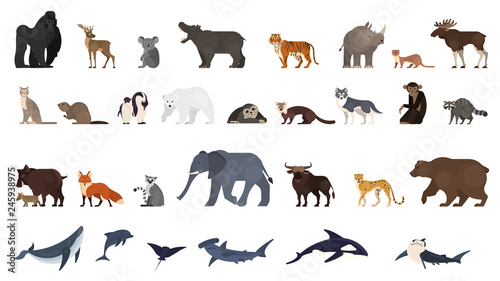 Photo  Animal set. Collection of exotic and wild animals