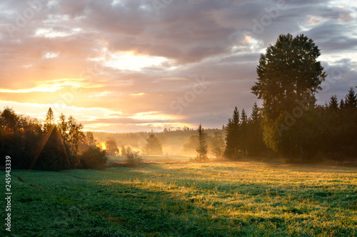 Foto op Plexiglas Ochtendgloren Tranquil foggy grassland and trees at sunrise