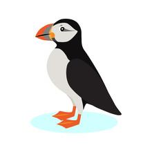 Atlantic Puffin Icon, Polar Bi...