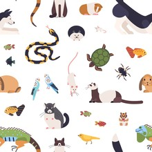 Seamless Pattern With Pets On ...