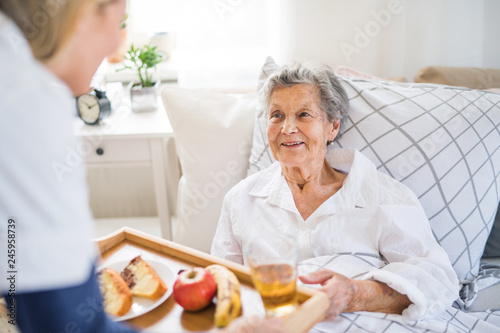 Fototapeta A health visitor bringing breakfast to a sick senior woman lying in bed at home. obraz