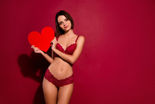 Portrait Of Nice Cute Sweet Gorgeous Attractive Lovely Slim Fit Thin Lady Girlfriend Holding In Hands Large Big Heart Health Healthy Cardiology Isolated Over Burgundy Maroon Background